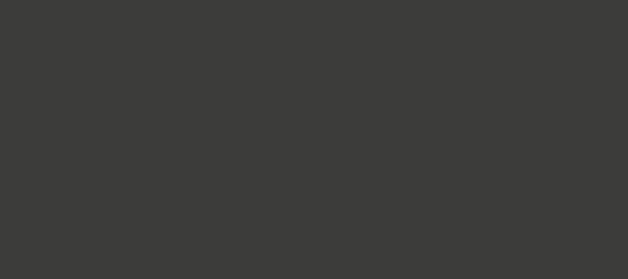Bionicon Logo