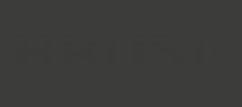 Bruse Logo